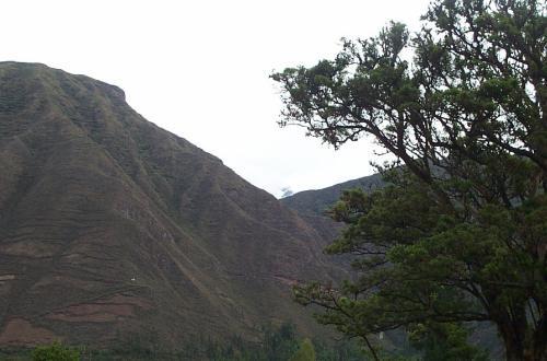 peru04px051